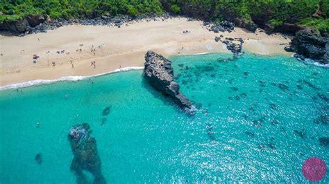 punaluu black sand beach big island 7 handsome beaches of punaluu beach punaluu black sand beach big island 7