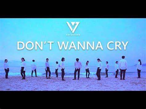 tutorial dance seventeen don t wanna cry seventeen세븐틴 울고 싶지 않아don t wanna cry dance cover
