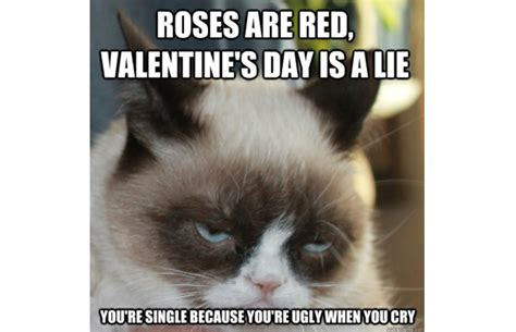 Grumpy Cat Meme Valentines Day - carlees blog the origins of grumpy cat