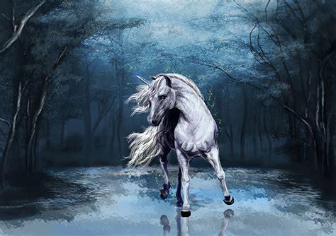 imagenes de unicornios y caballos papeis de parede unic 243 rnios m 225 gicos animais florestas