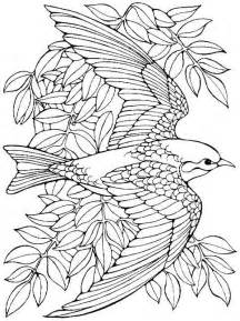 coloring pages for bird coloring pages for adultskids coloring pages