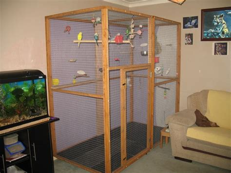 indoor aviary diy bird toys pinterest search