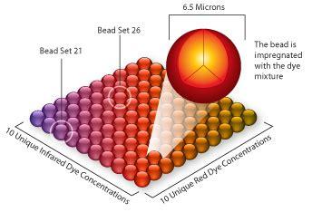 multiplex bead array procartaplex multiplex immunoassays