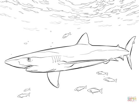 blue shark with pilot fishes coloring page free