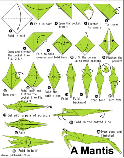 Origami Insects - roots n shoots praying mantis biological