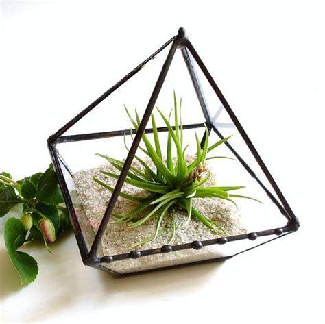 Terrarium Kaca Glass Terrariums Triangle pin by bellus on 4 walls and adobe slabs