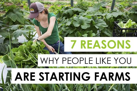 7 Reasons Like Rock by 7 Reasons Why Like You Are Starting A Farm