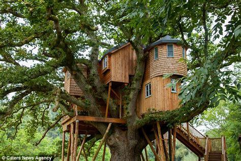 Jual Nes V Manado primate experts get married in treehouse before honeymoon
