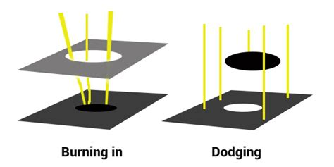 dodge and burn photography en dodging and burning to create more effective black