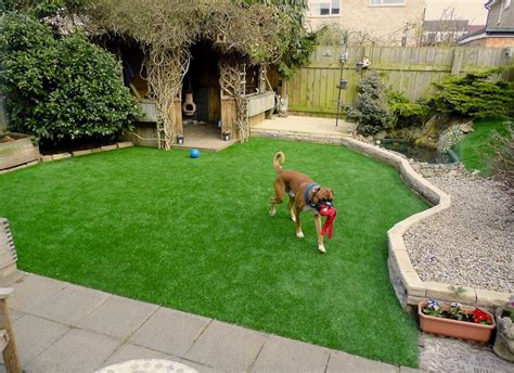 how to landscape a dog friendly garden sunset is your fake lawn safe