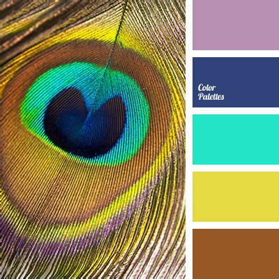 peacock feather colors the color of peacock feathers color palette ideas