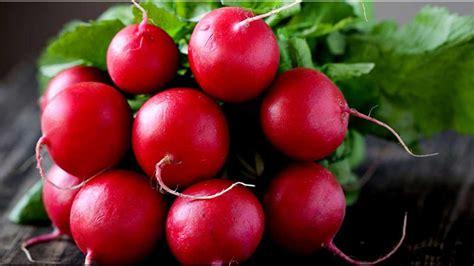 Radish Lobak Merah nama buah berawalan huruf l www buahaz