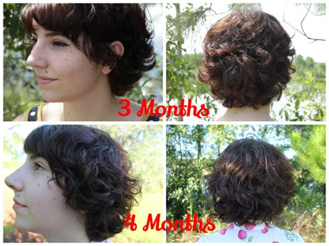 time to grow out pixie curly hair the lacuna stitch growing out my pixie cut 6 months progress