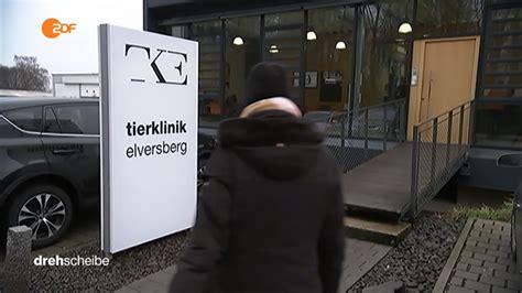 elversberg tierklinik die klinik tierklinik elversberg