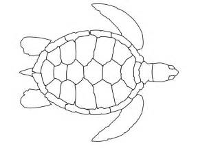 turtle coloring page free coloring pages of turtle