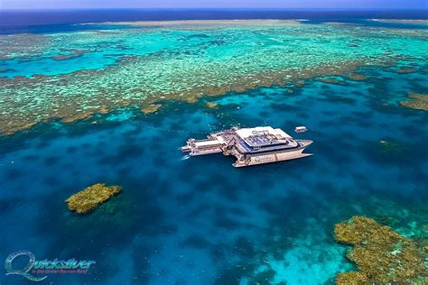 best place to dive the great barrier reef best dive in the great barrier reef