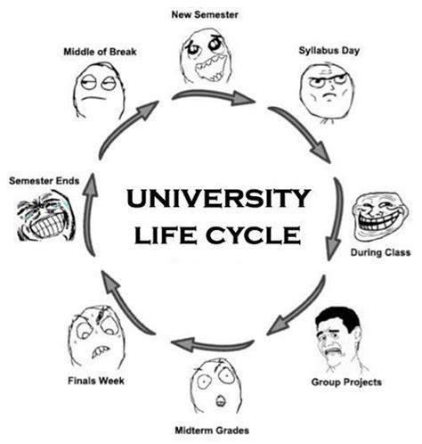 Uni Memes - m o o k my uni life start