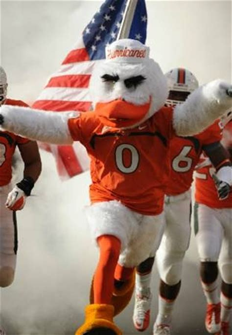 miami hurricane chat room 26 best images about of miami hurricanes the