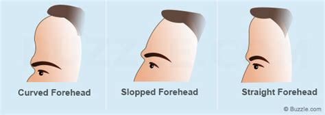 shaping hair the top of forehead for men face reading techniques