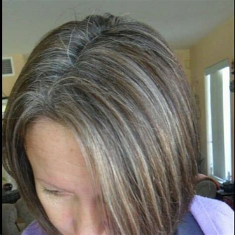 diy lowlights to color grays best 25 hair highlights and lowlights ideas on pinterest