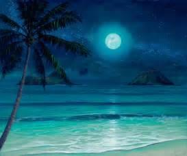Hawaiian Wall Murals tropical beach paintings night archive thomas deir