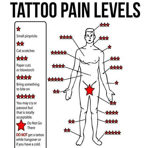 tattoo body placement chart tattoo pain levels shawna s stuff pinterest pain d