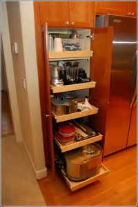 kitchen cabinet organizer kitchen cabinet organizers pull out home design ideas