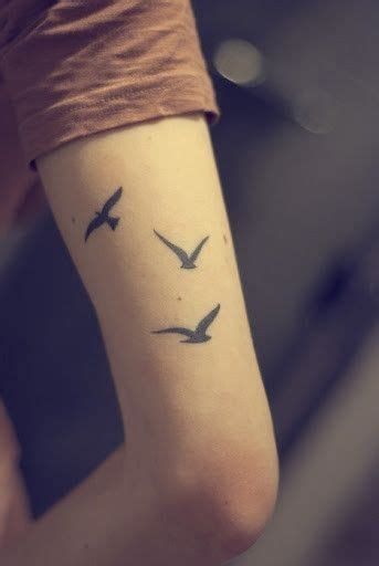 30 three little birds tattoo ideas the wild tattoo 2017