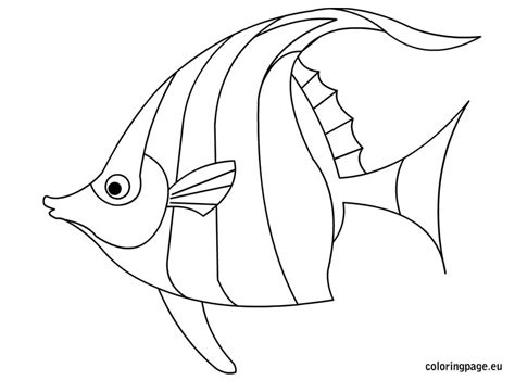 coloring page tropical fish tropical fish coloring download tropical fish coloring