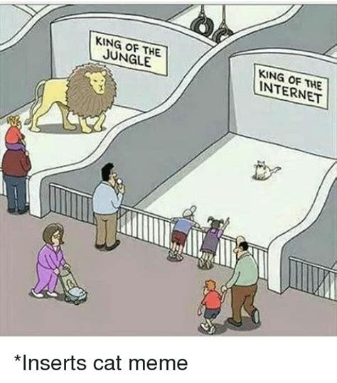 Internet Cat Meme - 25 best memes about cat meme cat memes