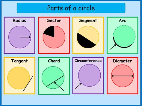 Part Of The what are the parts of a circle a plus topper
