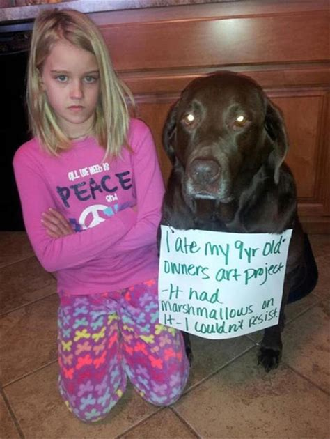 shaming pictures shaming dump a day