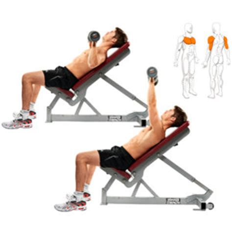 incline bench press muscles worked pain and gain perfectly timed fat loss part 2