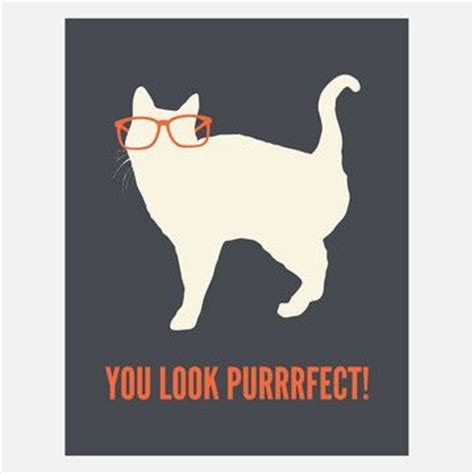 Purrrfect Meme - mais de 1000 ideias sobre optician no pinterest uniforme