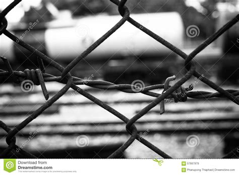 pics for gt barb wire fence black and white