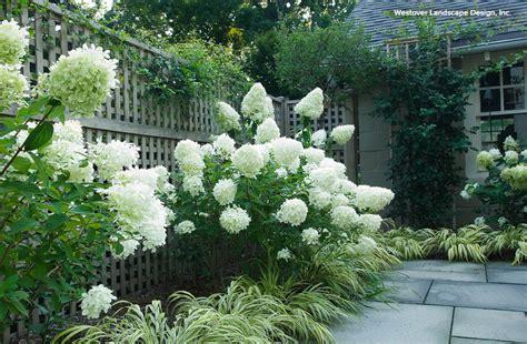 new in open box home classics 4 quot memory foam mattress conseils de pro pour associer vos plantes au jardin