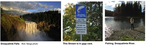 river issaquah invitation to issaquah vital water issues oct 7 6 30 center for environmental