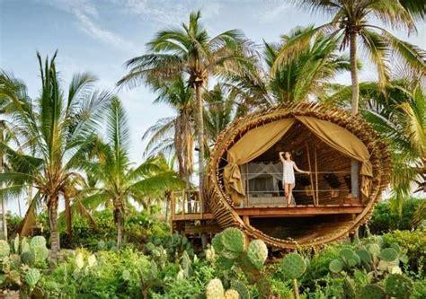 la casa del arbol la casa del 193 rbol de playa viva un lugar donde