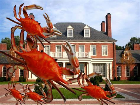 crab houses in annapolis house of the day a maryland crab tycoon is selling his sick mansion for 32 million jpg