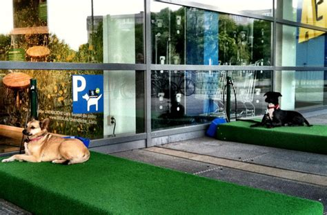 are dogs allowed in ikea 11 surprising franchise stores where you can take your