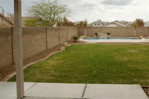 az backyards arizona backyards gotta love em live pool backyard