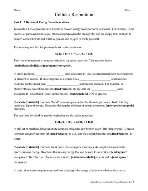 Cellular Respiration Breaking Energy Worksheet Answers by Cellular Respiration Breaking Energy Worksheet