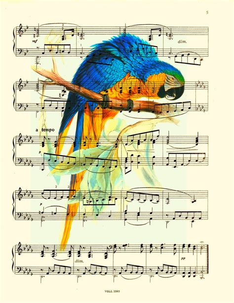 doodle 157 combinations list sheet print blue and yellow macaw painting