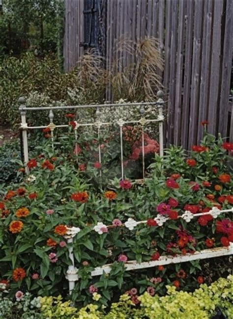 lettuce  forget  humble bed frame garden whimsy