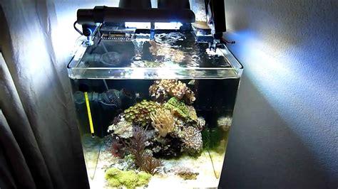 nano aquarium beleuchtung dennerle 60 liter nanoriff led beleuchtung nano