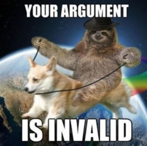 Meme Your Argument Is Invalid - sloth invalided argument your argument is invalid know