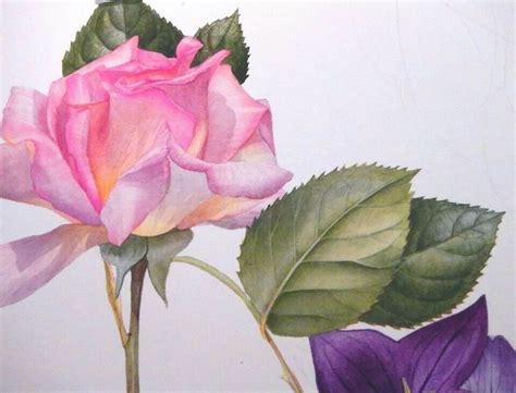 billy showells botanical painting billy showell my favorite flowers