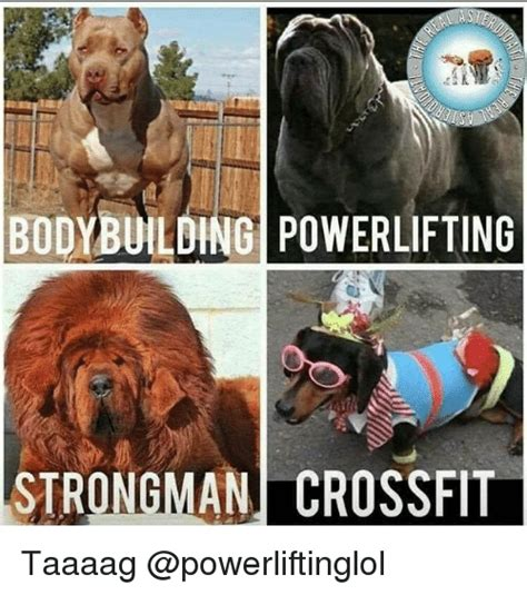 bodybuilding powerlifting strongman crossfit taaaag meme