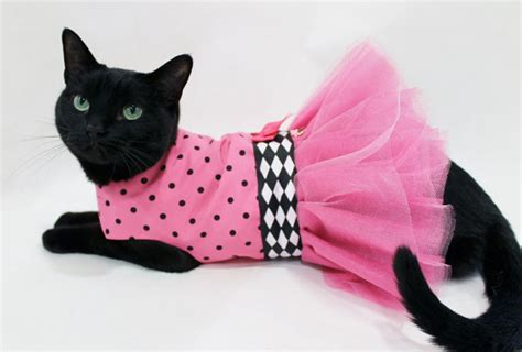 Pink Polka Does It Again Pet Pet Pet Product 2 by Cat Dress Cat Clothes Pink And Black Polka By