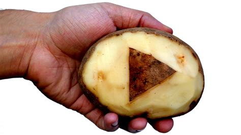 what is potato how is like a potato